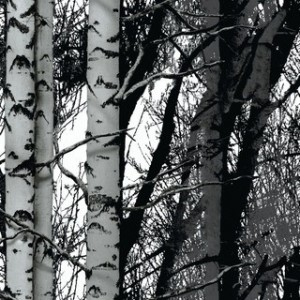 Декоративно фолио - Wood - 45см. | d-c-fix