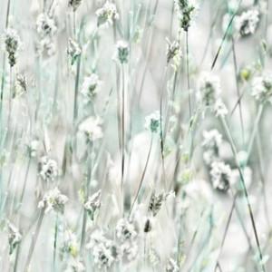 Декоративно фолио - Sommerset - 45см. | d-c-fix